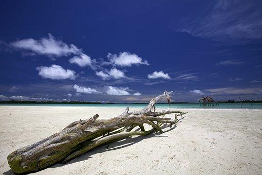 Landscape, Indonesia, Halmahera, Widi Islands