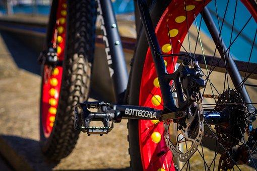 Bike, Mature, Spokes, Rim, Cycling, Fatbike, Wheel