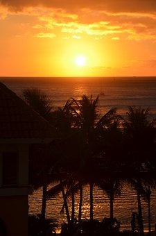 Sunset, Hawaii, Palms, Palm Trees, Trees, Sun, Calm