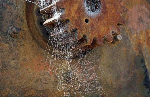 Cobweb, Spider Webs, Stainless, Gear, Network, Cobwebs