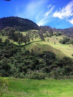 Landscape, Cocora Valley, Travel, Destinations, Valley