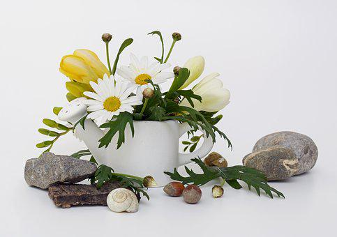 Watering Can, Spring Greeting, Freesia, Yellow, White