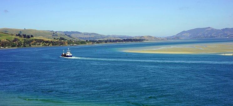 Bay Of Otago, Waterway, Narrow, New Zealand