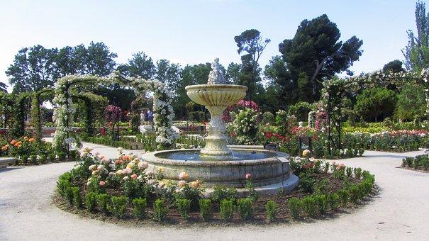 Park, Flowers, Nature, Spring, Flower, Garden