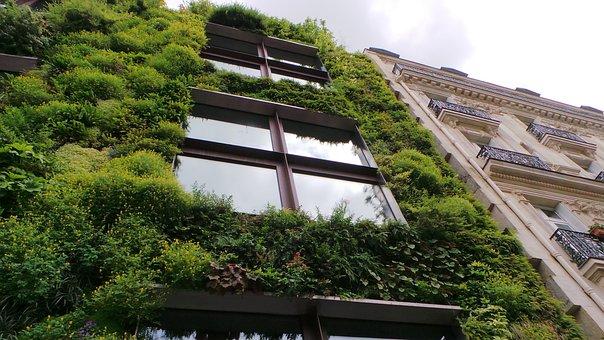 Wall, Eco, Eco Wall, Green, Nature, Building, Live Wall