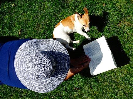 Hat, Book, Read, Pet, Relax, Grass, Books, Garden, Are