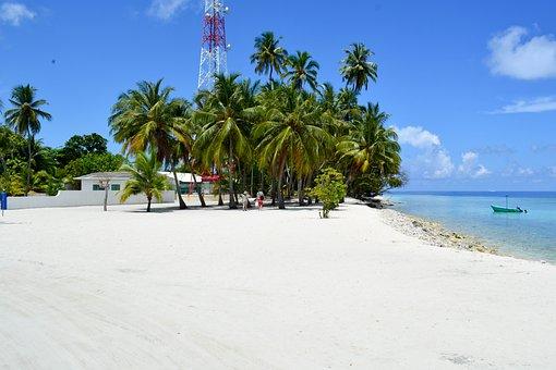 Baa, Dharavandhoo, Maldives, Beach, Palm Trees, House