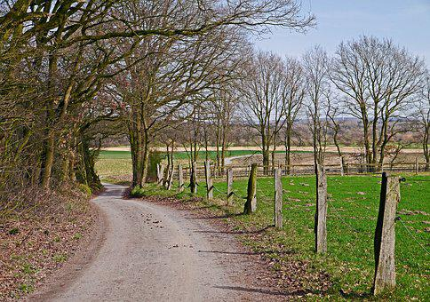 Münsterland, Agriculture, Dirt Track, Trail, Hill Land