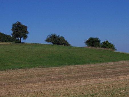 Sinsheim, Landscape, Meadow