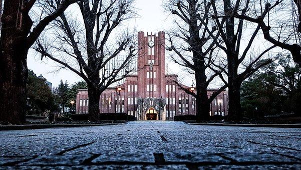 University, Japan, Todai, Tokyo, Autumn