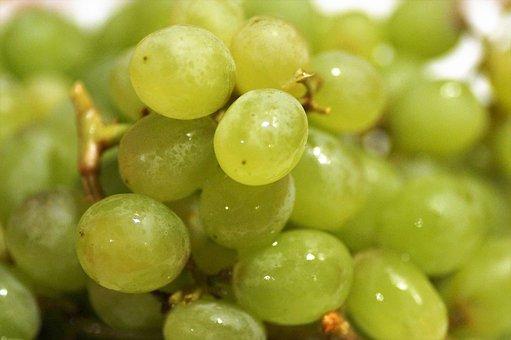 Grapes, Fresh, Fruit, Berry, Juicy, Green, Mature