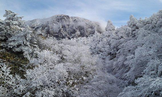 Halla Mountain And Snow Nambyeok