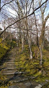 Japan, Lanshan, Temple Of Stillness And Light Is, Osaka