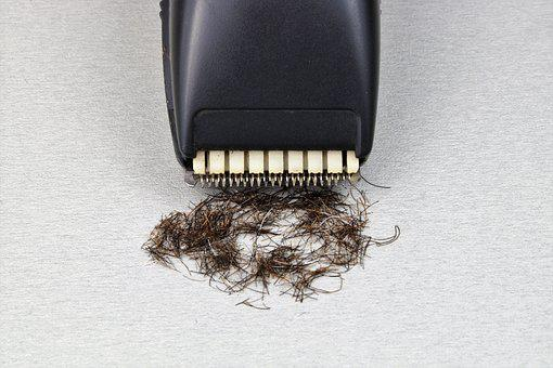 Razor, The Long-hair Cutter, Shaver, Shave, Shaving