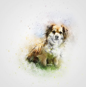 Dog, Cute, Pet, Grass, Art, Abstract, Vintage, Design