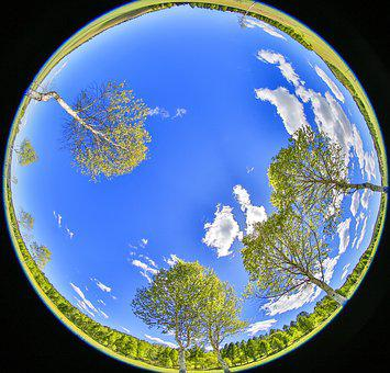 Blue Sky, Young Leaves, Spring, All, Trees, Meadow