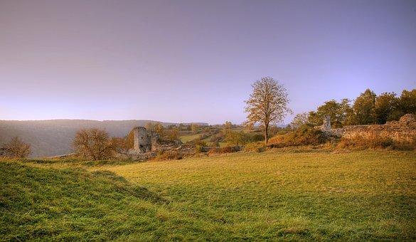 Landscape, Grass, Tree, Field, Meadow, Sky