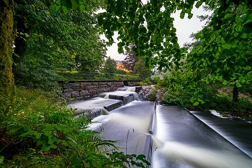 Fish, Ladder, Forest, River, Nature, Outdoors, Dam