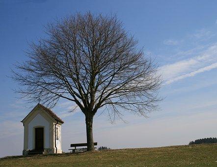 Feldkapelle, Tree, Bank, Spring, Nature, Landscape, Sky