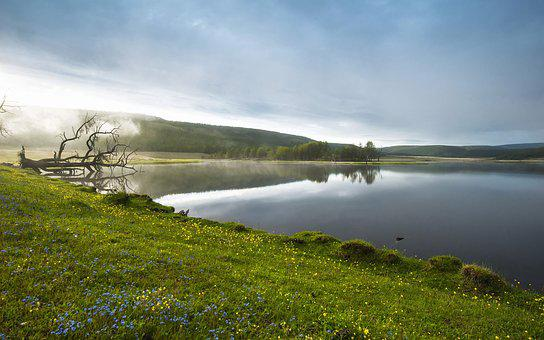 Lakeside, Morning Haze, Flowers, Spring