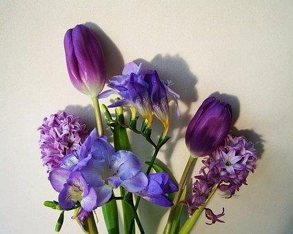 Bunch Of Flowers, Bluish-purple Colors, Cut Flower