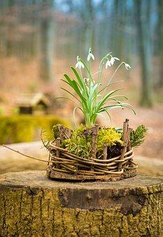 Easter Nest, Spring, Easter, Nature, Decoration
