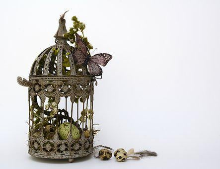 Easter, Quail Eggs, Feather, Butterfly, Lantern, Hay