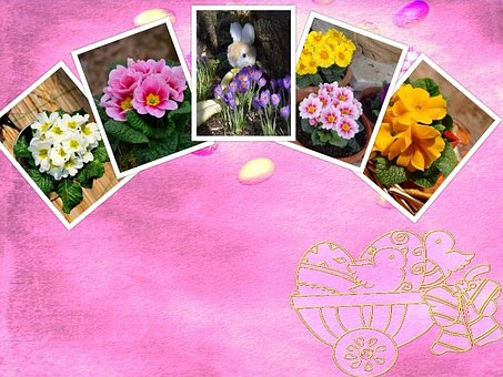Easter, Collage, Background, Symbol, Flowers, Plant