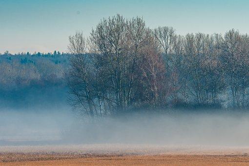 Morning, Fog, Mood, Skies, Rest, In The Fog, Colourless