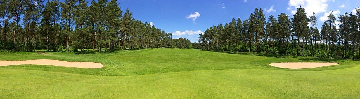 Golf, Green, Fairway, Forest, Trees