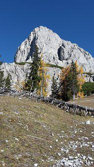 Mountain, Autumn, Alpine, Admonter Kaibling, Larch