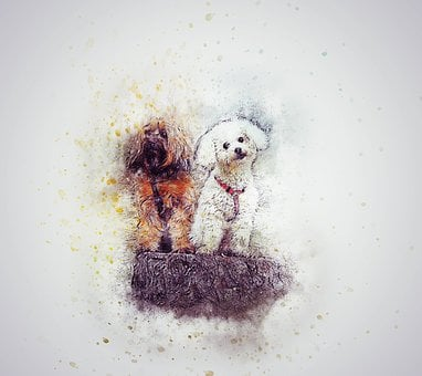 Dogs, Cute, Pet, Tree Trunk, Art, Abstract, Vintage