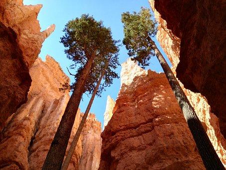National Park, Bryce Canyon, Usa