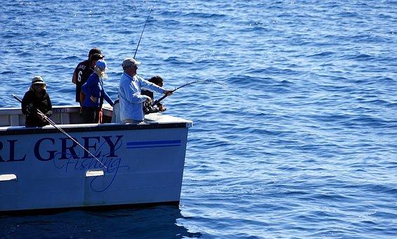 Fish, Deep Sea Fishing, Boat, Angler, Fishing Boat