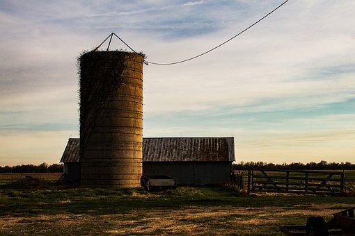 Silo, Barn, Farm, Agriculture, Rural, Building, Farming