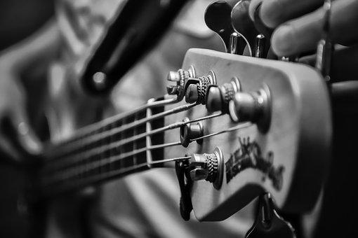 Music, Low, Electric Bass, Strings, Keys, Rock, Stage