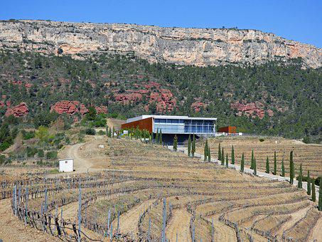 Winery, Vineyards, Priorat, Modern Architecture