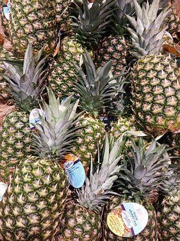 Pineapple, Fruits, Fruit, Young Pineapple, Plant