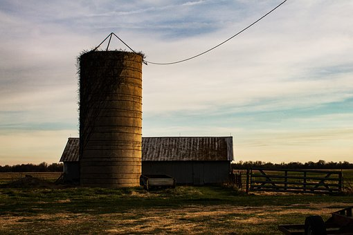 Silo, Barn, Farm, Agriculture, Rural, Building, Farming
