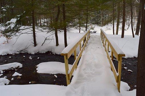 Bridge, Snow, Forest, Stream, Creek, Winter, Nature