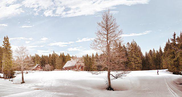 Wintry, Alm, Alpine, Mountain Hut, Snow, Hut, Landscape