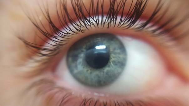 Eye, Eyelashes, Eyeball, Blue-eyed, Blue Eyes