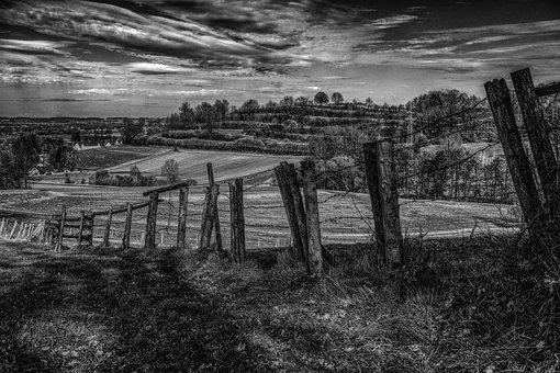 Fence, Landscape, Away, Nature, Sky, Forest