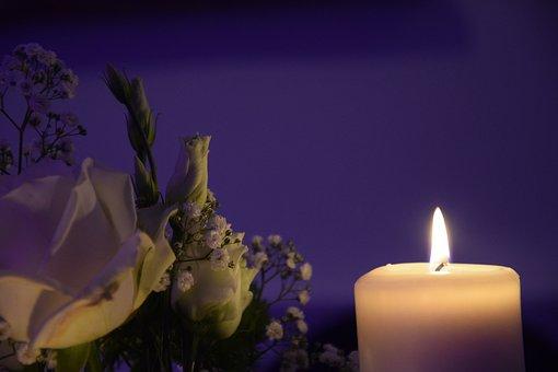 Wedding, Decoration, Marry, Flowers, Wedding Decoration