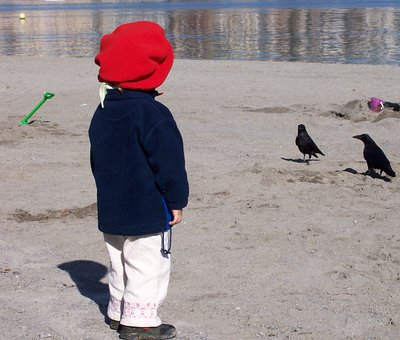 Red Hat, Child, Dig, Beach, Crows