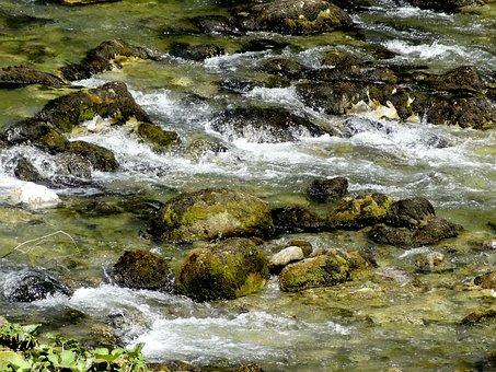 Water, Stream, River, Nature, Flow, Green, Rock, Wild