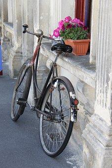 Bike, Bicycle, Vintage, Potplant, Windowsill, Oamaru