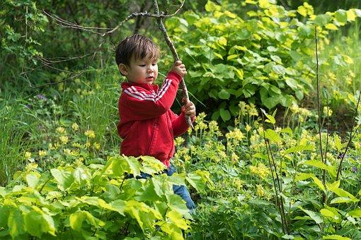 Boy, Forest, Nature, Child, Childhood, Fun, Happy