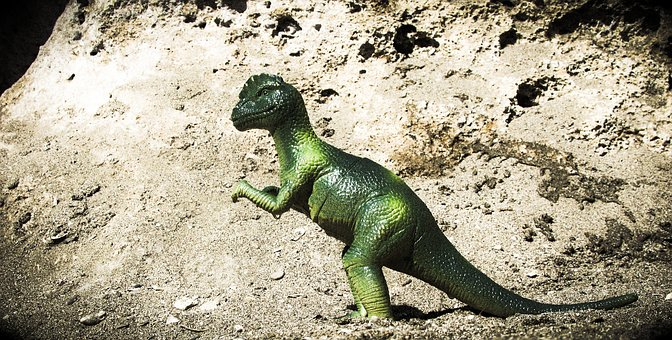 Pachycephalosaurus, Dinosaur, Animal, Reptile, Extinct