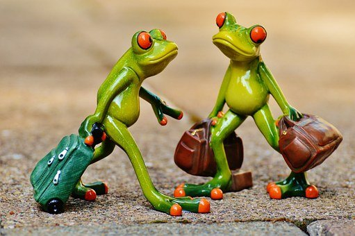 Frogs, Funny, Travel, Luggage, Holdall, Go Away